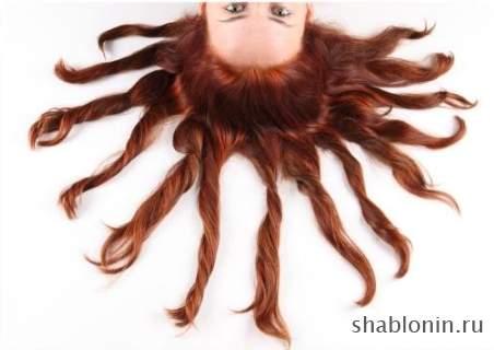 волосы клипарт: