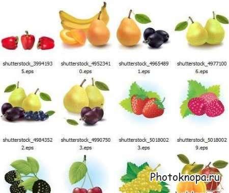 Картинки синие овощи и фрукты - b