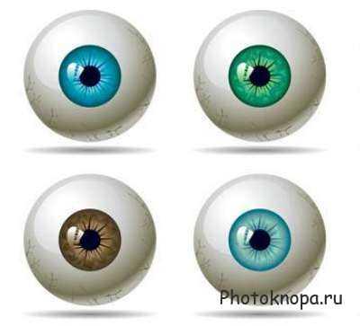 Скачать клипарт глазные яблоки (глаза) в векторе.  Глаза со зрачками разного цвета.