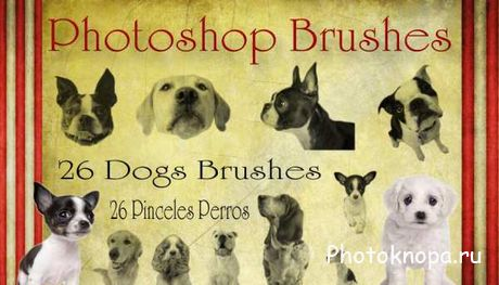 Собаки кисти для Photoshop - Dogs Brushes