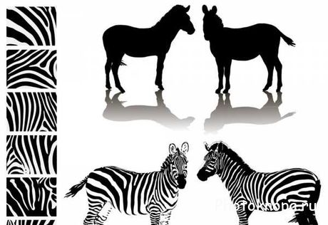 ������� ����� �������� ��������� ������� - Silhouettes animals