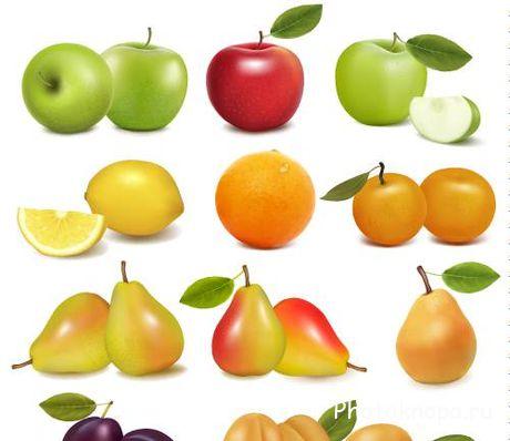 Скачать клипарт свежие фрукты и ягоды