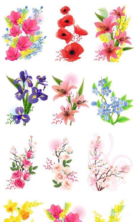 Цветы букеты в картинках