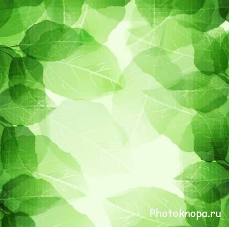 ������ ������� ������ � ������� - Green leaves