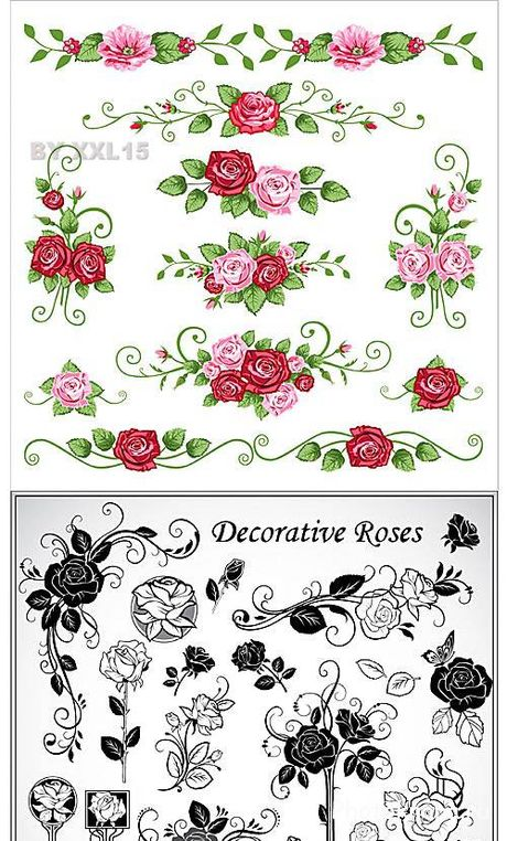 ������������ ���� ��������� ������� - Decorative roses