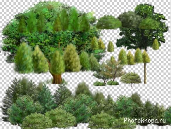 Векторные деревья в плане  ArStyleorg  портал обо всем