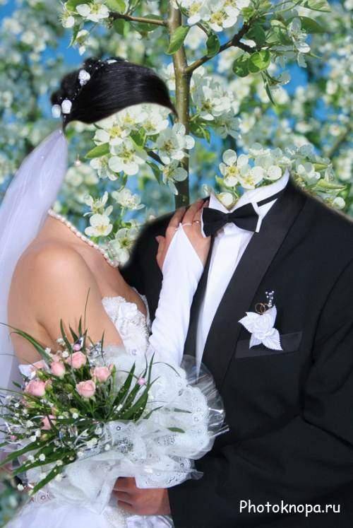 ba32e6c86fc9017 Свадебный шаблон для фотошопа - жених и невеста скачать бесплатно