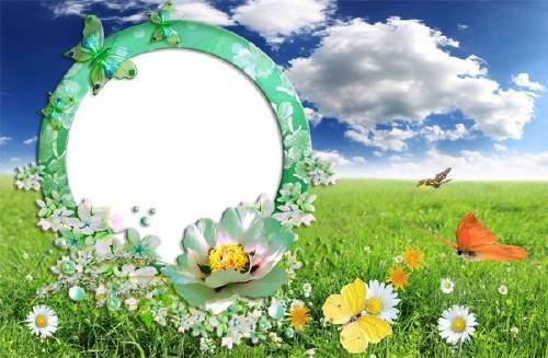 Фоторамка - Зеленая поляна с бабочками