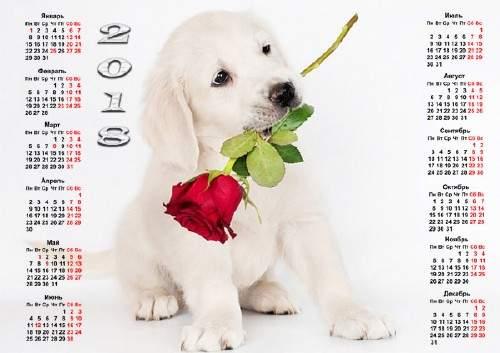 Красивый календарь - Милый щенок с розой