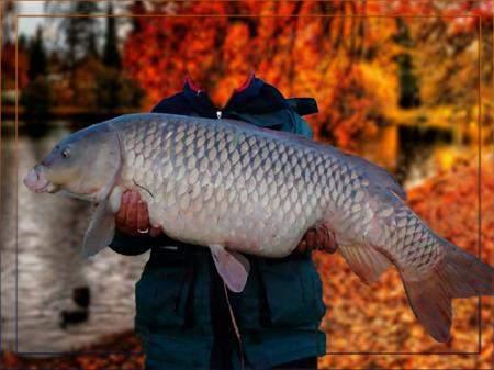 Фотошаблон для фотошопа - На осенней рыбалке